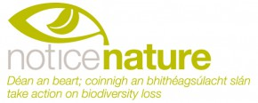 Notice Nature Logo