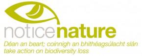 Notice Nature